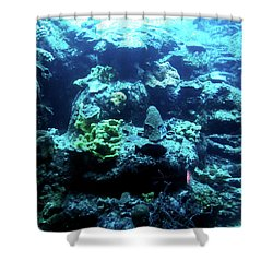 Shower Curtain featuring the photograph Coral Art 4 by Francesca Mackenney