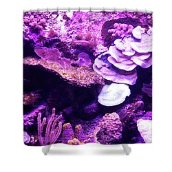 Shower Curtain featuring the digital art Coral Art 5 by Francesca Mackenney
