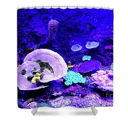 Shower Curtain featuring the digital art Coral Art by Francesca Mackenney