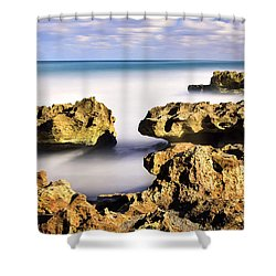 Coral Cove Seascape Shower Curtain