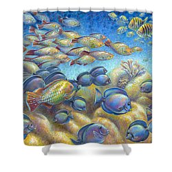 Coral Reef Life Silvers Shower Curtain
