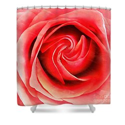 Shower Curtain featuring the photograph Coral Rose - My Pleasure - Rose by Janine Riley