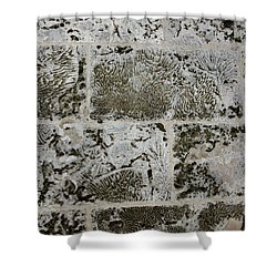 Coral Wall 205 Shower Curtain