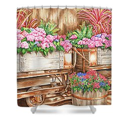 Cordelia's Train Shower Curtain