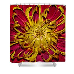 Core Of The Flower Shower Curtain