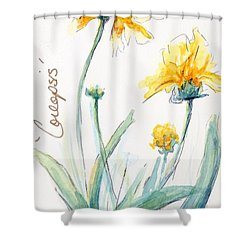 Coreopsis Shower Curtain by CheyAnne Sexton