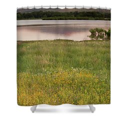 Corepsis Blooming At The Quanah Parker Lake Shower Curtain by Iris Greenwell