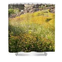 Corepsis Field Of Dreams Shower Curtain by Iris Greenwell