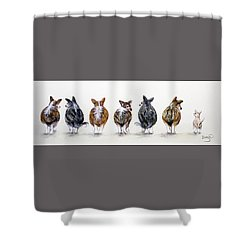Corgi Butt Lineup With Chihuahua Shower Curtain by Patricia Lintner