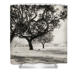 Cork Trees Shower Curtain