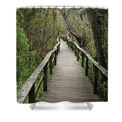 Corkscrew Boardwalk Shower Curtain