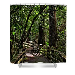 Corkscrew Swamp Shower Curtain
