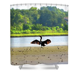 Cormorant At Topsail Beach Shower Curtain by Eva Kaufman