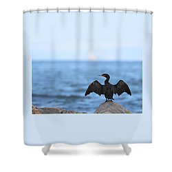 Cormorant Port Jefferson New York Shower Curtain by Bob Savage