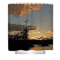 Shower Curtain featuring the photograph Cormorant Tree by Lynda Lehmann