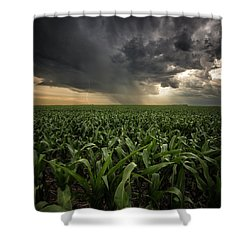 Shower Curtain featuring the photograph Corn And Lightning by Aaron J Groen