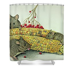 Corn Meal Shower Curtain