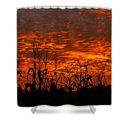 Corn Under A Fiery Sky Shower Curtain