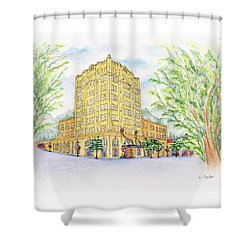 Corner Grandeur Shower Curtain