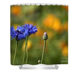 Cornflowers -2- Shower Curtain