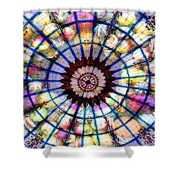Cornucopia 2 Shower Curtain