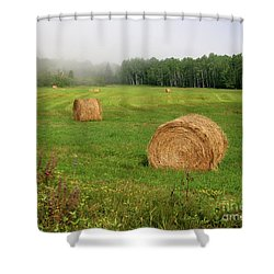 Shower Curtain featuring the photograph Cornucopia by PJ Boylan