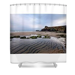 Low Tide Whipsiderry Shower Curtain