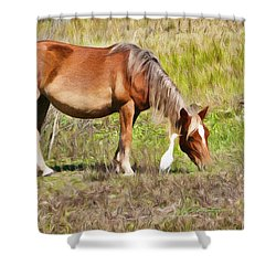 Corolla's Wild Horses Shower Curtain
