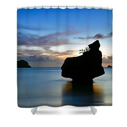 Shower Curtain featuring the photograph Coromandel Dawn by Nicholas Blackwell
