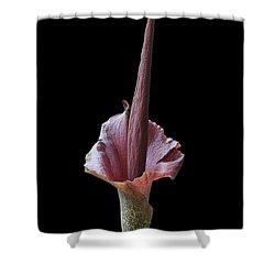 Corpse Flower Shower Curtain