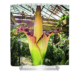 Corpse Plant Shower Curtain