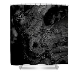 Corpses Fossil Shower Curtain