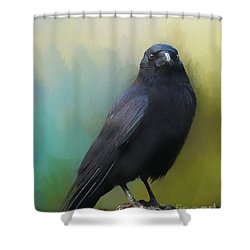 Corvid Shower Curtain