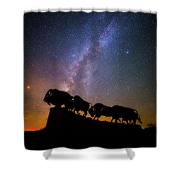 Shower Curtain featuring the photograph Cosmic Caprock Bison by Stephen Stookey