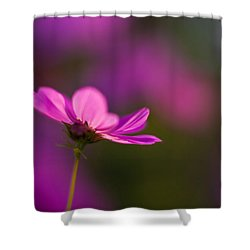 Cosmo Impression Shower Curtain by Mike Reid