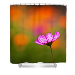 Cosmo Pastels Shower Curtain by Mike Reid