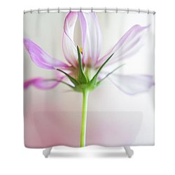 Cosmos 3 Shower Curtain