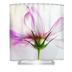 Cosmos 6 Shower Curtain