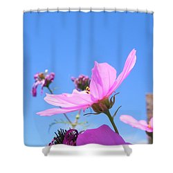 Cosmos Shower Curtain by Adrienne Petterson
