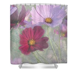 Cosmos Shower Curtain by Geraldine Alexander