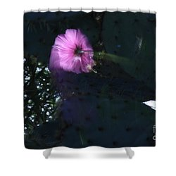 Shower Curtain featuring the photograph Cosmos  Number Three by Brian Boyle