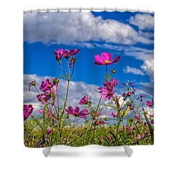 Cosmos Sky Shower Curtain by Alana Thrower
