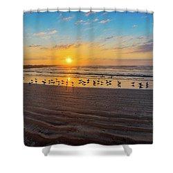 Coastal Sunrise Shower Curtain by Dave Files