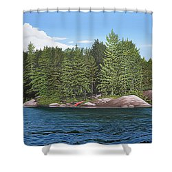 Shower Curtain featuring the painting Cottage View Silver Lake by Kenneth M Kirsch