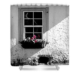 Cottage Window Shower Curtain
