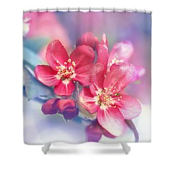 Cotton Cloud Shower Curtain by Kharisma Sommers