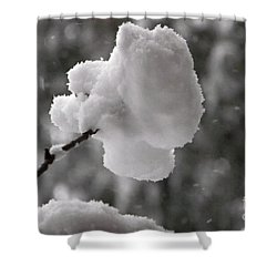 Cotton Snow Shower Curtain