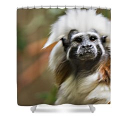 Cotton-top Tamarin _ 1a Shower Curtain