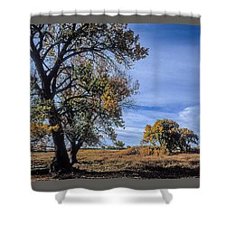 Cottonwood #5 Fall Ranch Colorado Blue Sky Shower Curtain