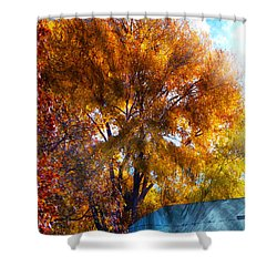 Cottonwood Conversations With Cobalt Sky  Shower Curtain